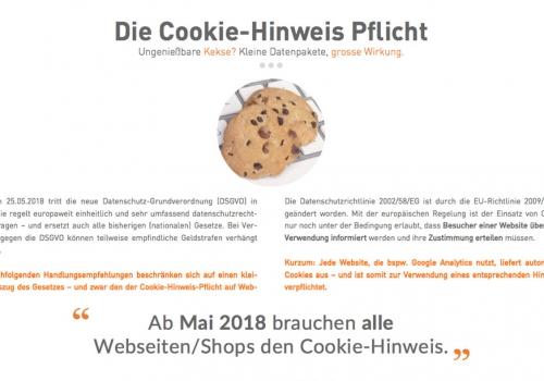 Cookie-Hinweis Handlungsempfehlungen