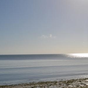 Oceanic Bay Hotel & Resort