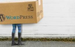 burnabit empfiehlt WordPress für kleine bis mittlere Webseiten